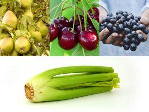 知道要吃什麼了!2017年最髒和最乾淨蔬果排名