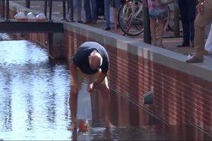 荷兰男子在运河放养金鱼,惹恼政府,勒令1个月内捞回