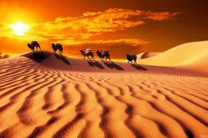 絲綢之路始於張騫?最新研究: 跟遊牧有關