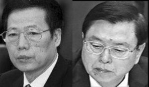 陈思敏:常委反腐 习用梁振英一人可双杀二张