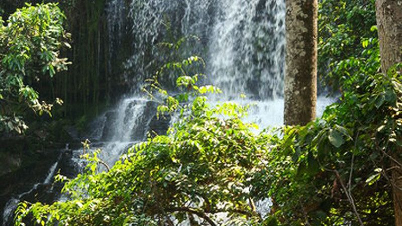 暴雨硬到瀑布玩 迦纳至少20学生惨死