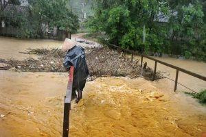 越南3酒汉闹事 放掉约800个标准泳池水量 毁坏大片作物