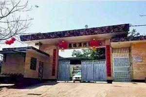 """夏小强:中国现代的""""死亡集中营"""""""