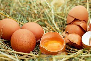 吃雞蛋的10個常見誤區,買回家的雞蛋到底要不要洗?