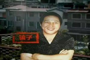 暴毙后终止审理裁定流出 王林诈骗奸幼犯罪史曝光
