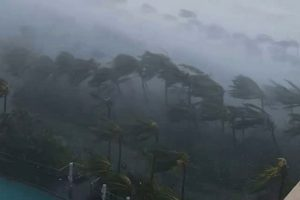 飓风黛比横扫澳洲北部 所到之处满目疮痍