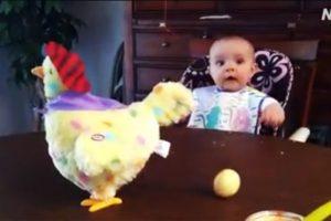 看到母雞生出彩色雞蛋 小寶寶的反應真無價