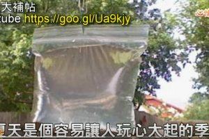 防蚊虫:把铜板放在装满水的透明袋子后,竟然发生了奇迹!(视频)