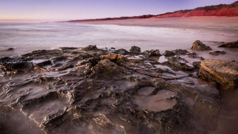真实版侏罗纪公园 澳洲发现20多种恐龙的乐园遗迹