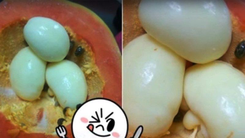 """切开日本木瓜,里面竟藏有""""3颗白煮蛋""""!原来它是⋯⋯挺可怕"""
