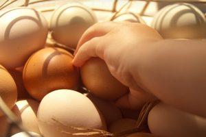 鸡蛋加1物可治这么多种病!真是赚到了