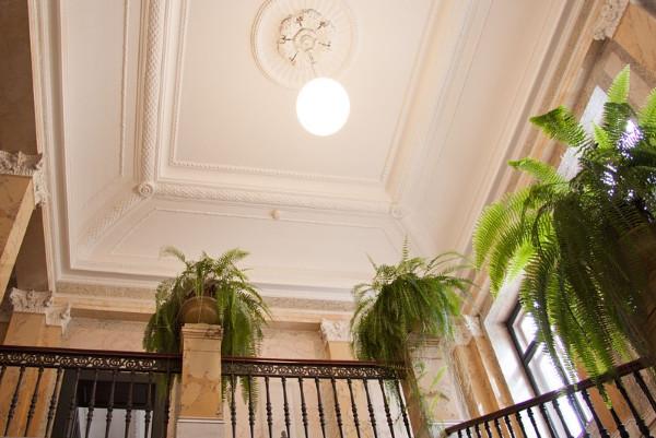 去除天花板上的黴菌,用以下方法讓家變得超凈白!