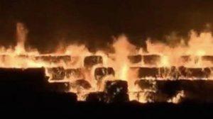 天津港又起大火 保税区纸厂陷火海映红天空