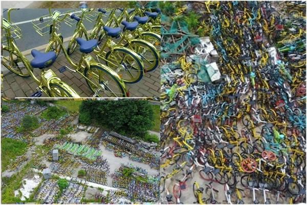 """大陆共享单车泛滥 杭州现""""单车公墓"""""""