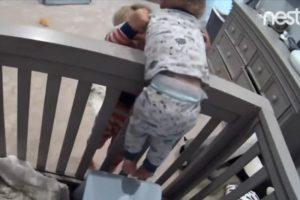1岁弟弟受困婴儿床 3岁哥哥的行动惊人