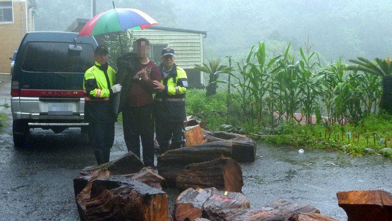 趁滂沱大雨上阿里山盗伐 山老鼠成员遭逮