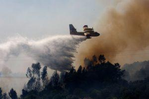 葡萄牙扑灭森林大火 消防飞机坠毁火势猛烈地区