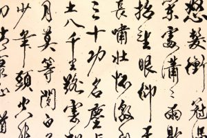 仲维光:谈治学及写作能力