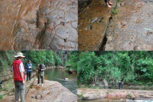 贵州惊现68枚怪脚印 1亿年前恐龙足迹?