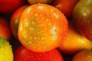 夏日滋补蔬菜水果有哪些?现在知道还不晚!