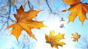一叶知秋–传统节气立秋习俗及养生