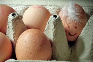 鸡蛋越光滑 代表母鸡越健康 买鸡蛋要这样选