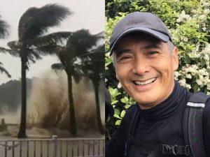 台风袭港树倒挡路 周润发徒手搬树