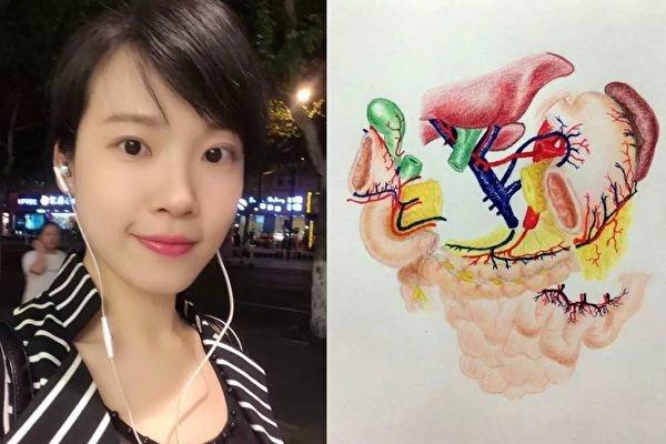 女醫生畫了一張解剖圖  一夜火爆互聯網