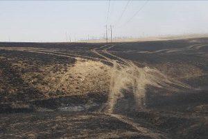美加边境神秘大火蔓延16公顷 罪魁祸首找到了