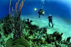 大陆两资深潜水员沉尸水底 女潜员事先写好遗书