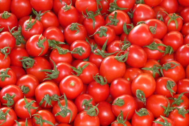 大番茄和小番茄的区别到底在哪里 哪种蕃茄更健康