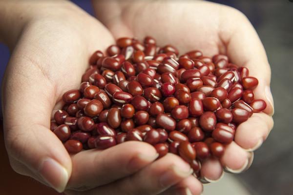紅豆、紅豆湯和紅豆水到底有什麼不同 營養師這樣告訴你