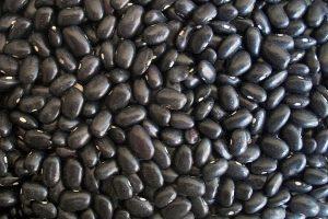 黑豆加这个解毒 黑豆水帮你抑制脂肪又抗老