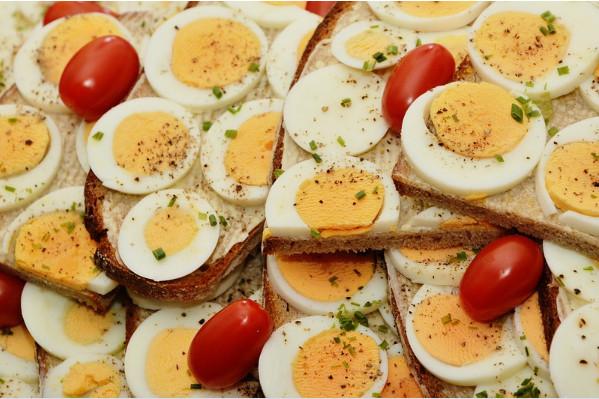 蛋白質益處這麼多 助你降脂強肌更成功