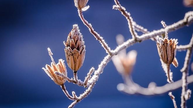 霜降天宇清   晚秋重養生