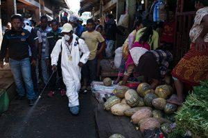 非洲鼠疫疫情爆发 百人丧生 九地区高度警惕