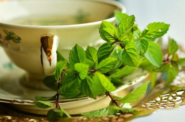 每天喝这种茶天然抗老 健康3级跳