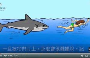 遇到凶猛动物攻击时 千万别这样做 自救技巧教你活下来(视频)