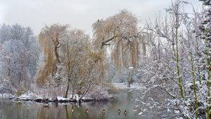 時候頻過小雪天 養藏適度人得安