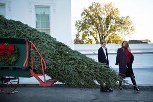 今年白宫圣诞树 美第一夫人携小儿子亲迎