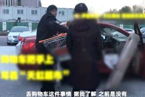 奇葩偷窃案! 北京夫妇为偷购物车拆车后座(视频)