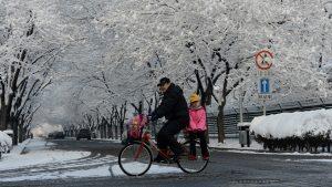 寒冬強推「煤改氣」北京再現「人道危機」