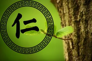 仁、義、禮、智、信原來對內臟有如此大的影響!你一定要讀一下