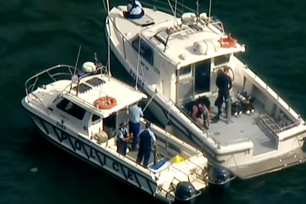 悉尼水上飞机坠毁6死 英餐饮集团CEO一家罹难