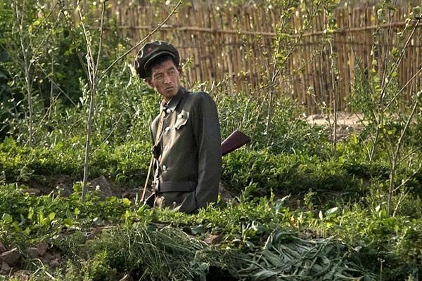 朝鲜士兵放假数月内幕惊人:外出找粮