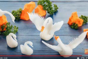 美麗天鵝一家 白蘿蔔做出來 真是太棒了(視頻)