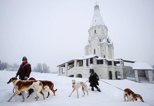 莫斯科史上最猛風雪 陸空交通受阻 至少1死5傷
