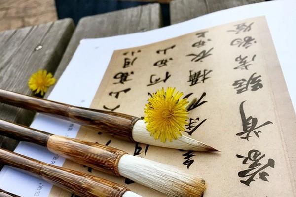 中國筆劃最多的漢字有160劃 99.9%人不認識(組圖)