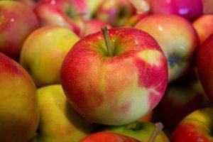 苹果热热吃 比生吃更营养(视频)