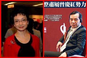 張明健:鄧家「駙馬」吳小暉 真正後台是江家